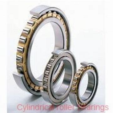 90 mm x 140 mm x 37 mm  NSK NN3018TBKR cylindrical roller bearings
