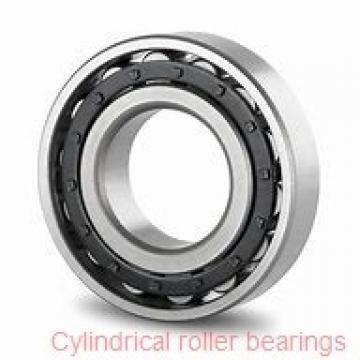 950 mm x 1150 mm x 118 mm  NKE NCF28/950-V cylindrical roller bearings